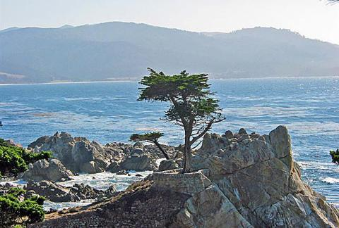 Recorriendo California: Monterey