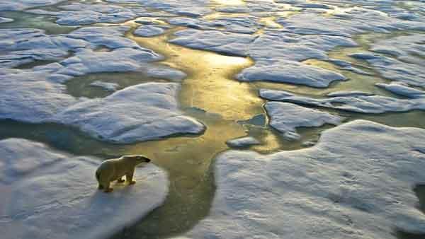 El cambio climático y el futuro de todos nosotros